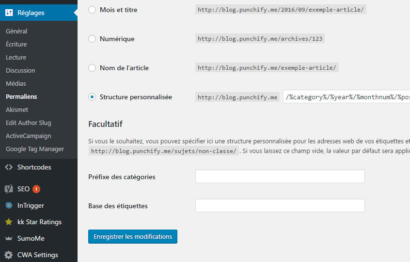 Plugin AMP pour site wordpress