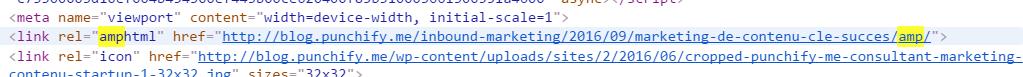 résultat technique de l'installation du plugin AMP sur un site wordpress